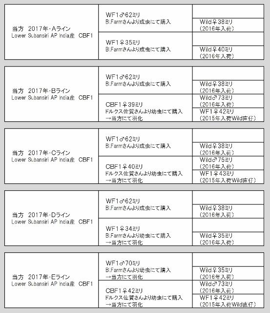 2017系統図 (553x640)