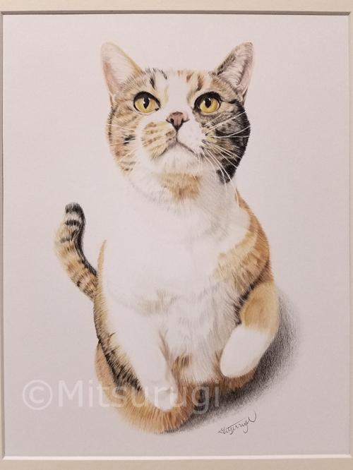 絵 イラスト ポートレート 肖像画 猫 六つ切