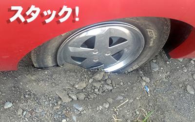 kawasemi3.jpg