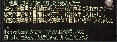 0607コタさん4