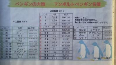 ペンギン個体名