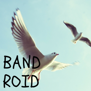 BAND ROID