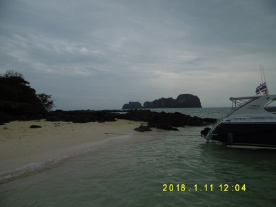 P1100184.jpg