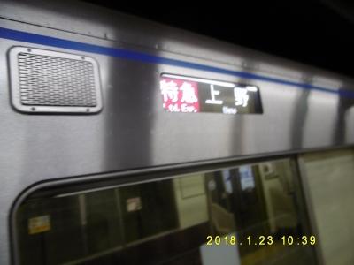 P1100491.jpg