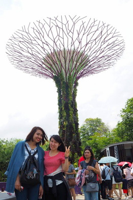 Garden by the bay (1)