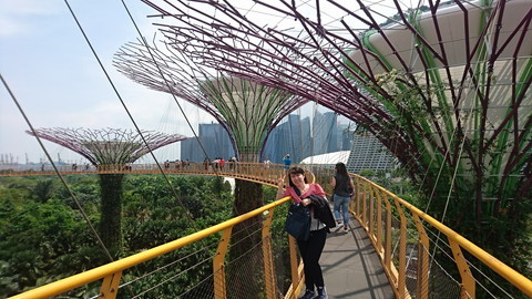 Garden by the bay (8)