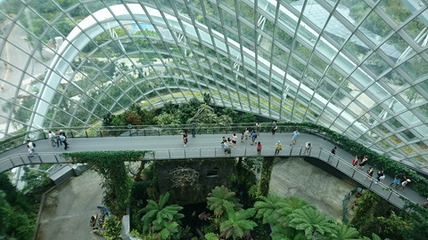 Garden by the bay (21)
