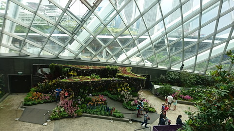 Garden by the bay (22)