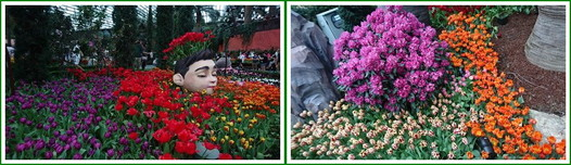 Garden by the bay (28)