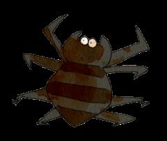 クモ 蜘蛛