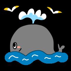 クジラ 魚 海