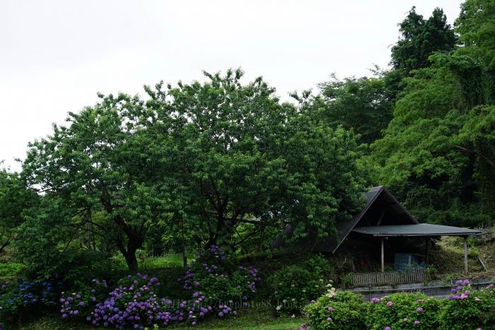 城北穴川3097