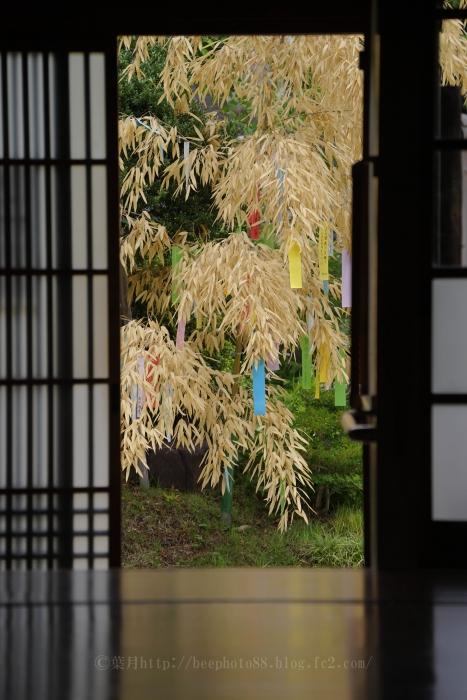 高尾駒木野庭園3371