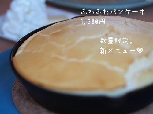 P4140052.jpg