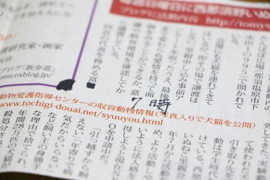 dd-645.jpg