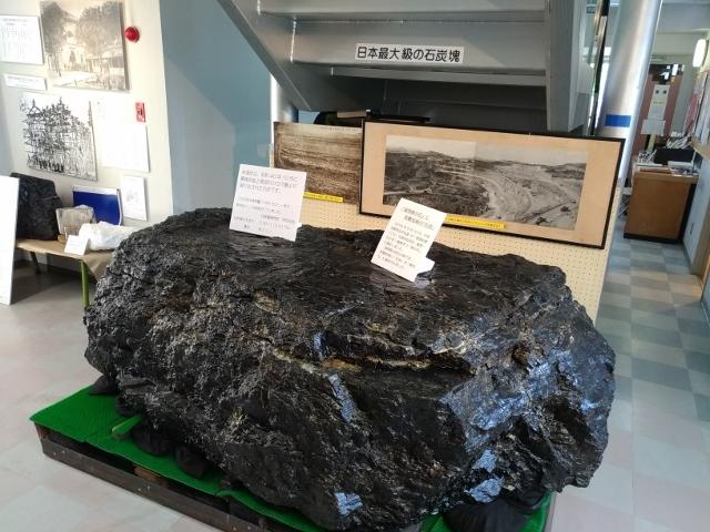 直方石炭 (1) (640x480)