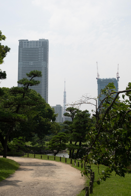 20180626-東京タワー