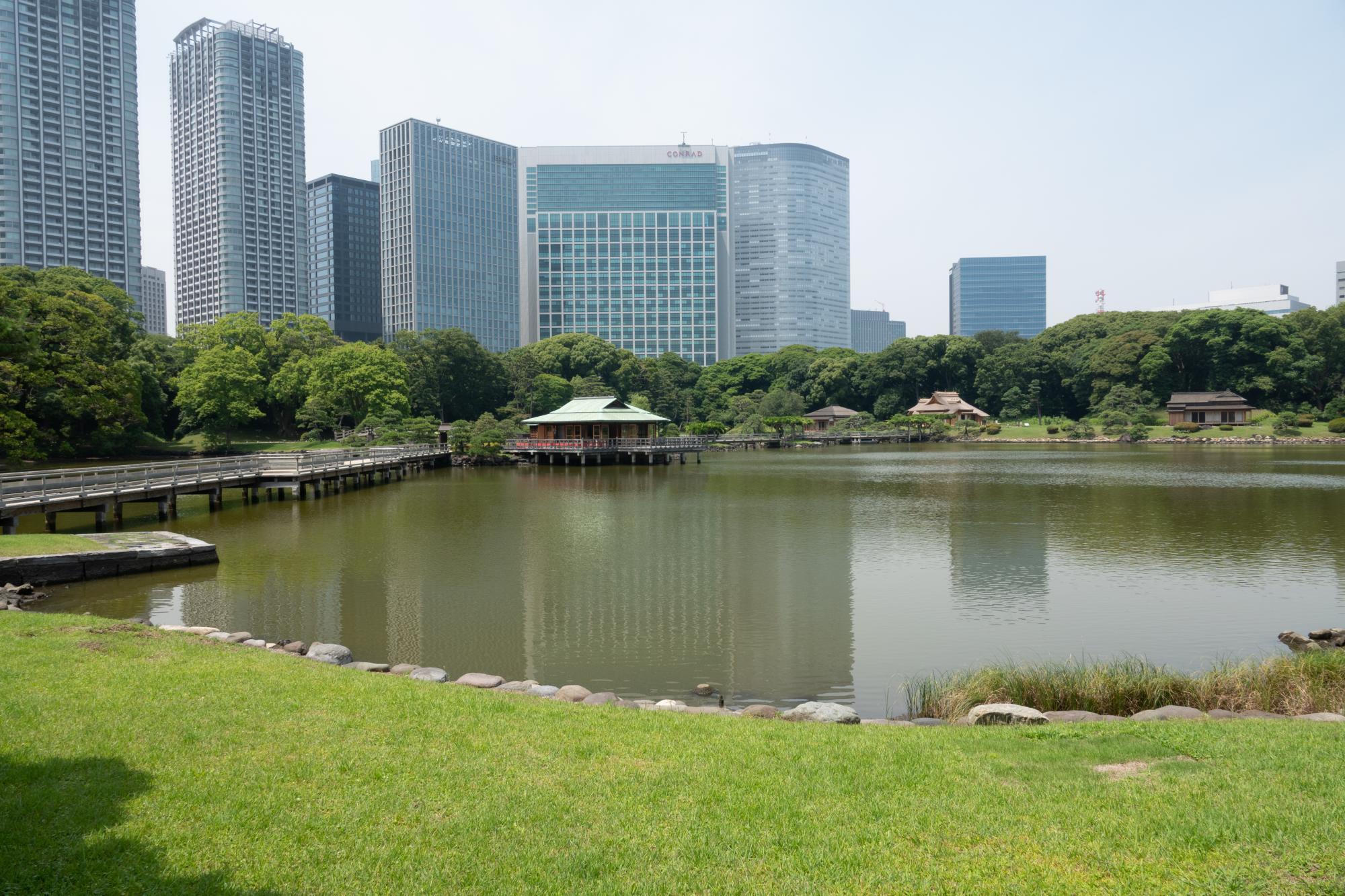 20180626-公園5