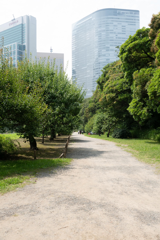 20180626-公園8