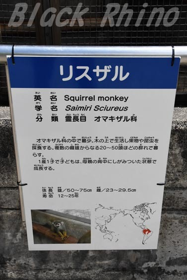 リスザル看板01 岡崎東公園
