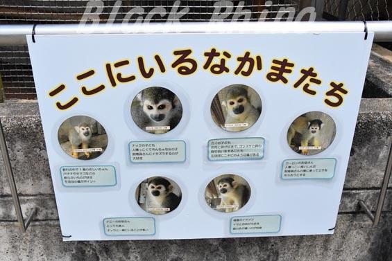 リスザル看板02 岡崎東公園