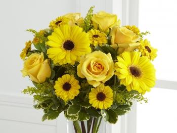 黄色のガーベラ
