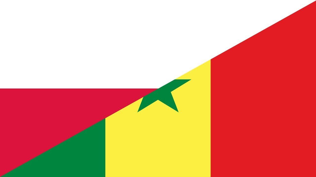 ポーランド対セネガル2