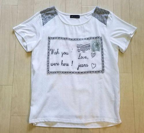 白いT シャツ襟ぐり2