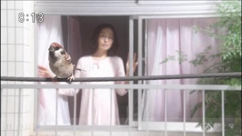 鈴愛の母・晴の朝の風景(NHK朝ドラマ・半分、青い)