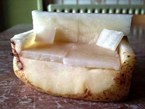ジャガイモでできたソファー