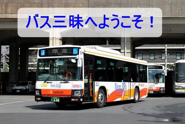 s-Sakai644F IMG_1700