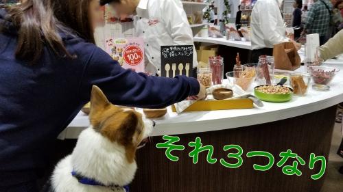 201804食べ放題会場②