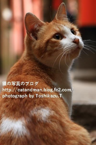 IMG_2669s.jpg
