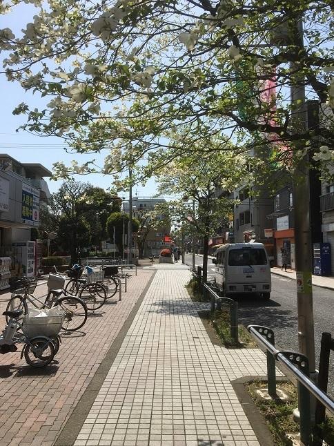 180413 okinazushi-25