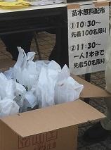 180501 shinchamatsuri-19