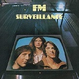 FM Surveillance