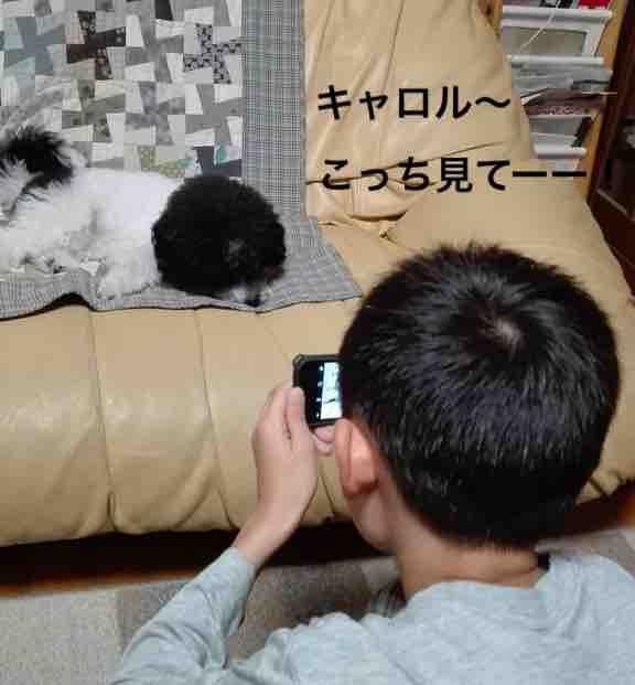 fc2blog_2018041016531984f.jpg