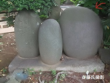 虎富 (2)
