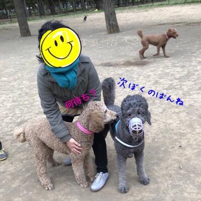 fc2blog_20180407000906f29.jpg