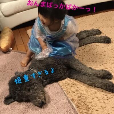fc2blog_20180413005634ec9.jpg