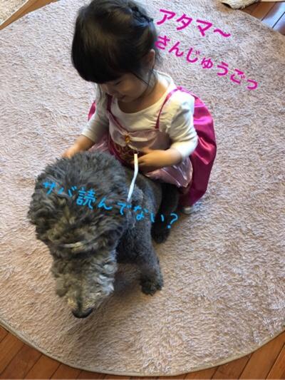 fc2blog_20180421011404627.jpg