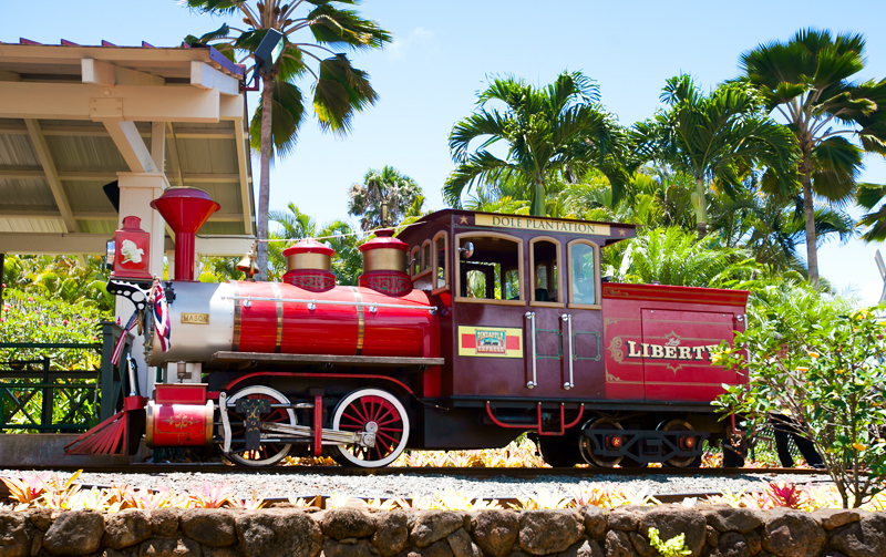 dole-plantation-pineapple-express-train-ride-04.jpg