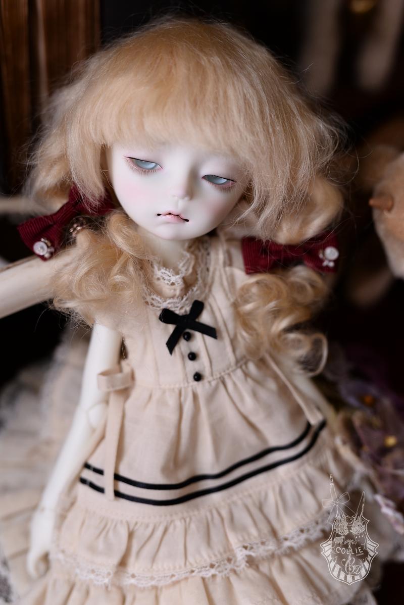 DSC_5185s.png