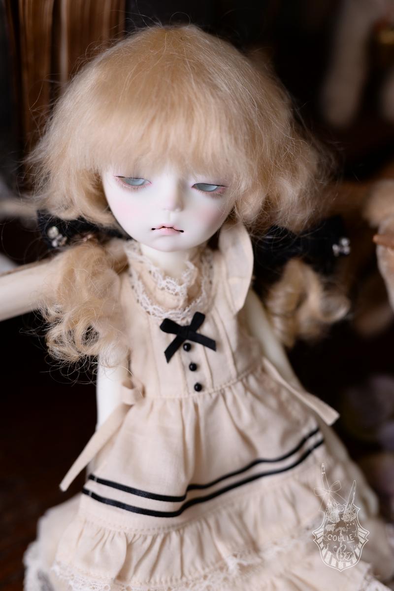 DSC_5190s.png
