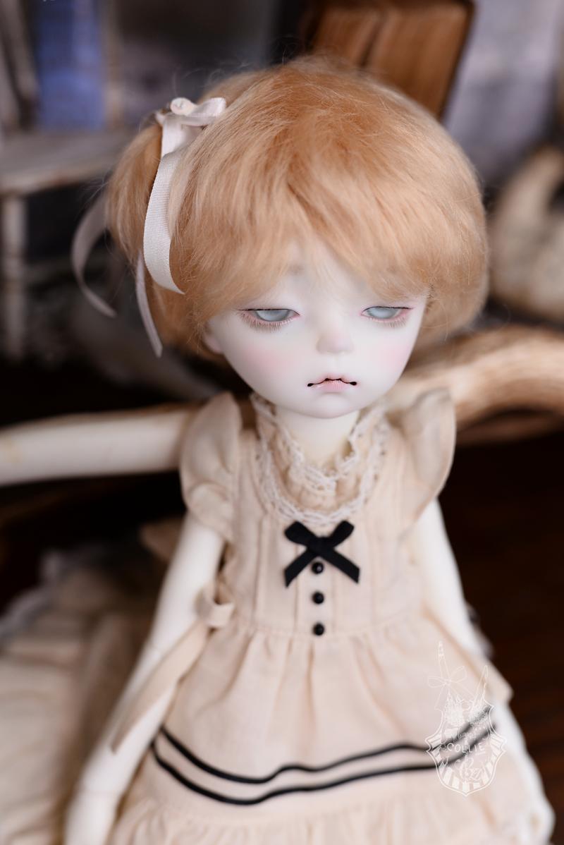 DSC_5197s.png