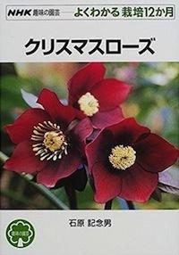 G-Xmasrose_2018050507473452e.jpg