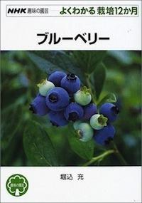 G-blueberry_20180615075210d8c.jpg