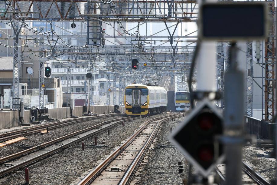 E257系500番台 ホリデー快速 富士山1号 1