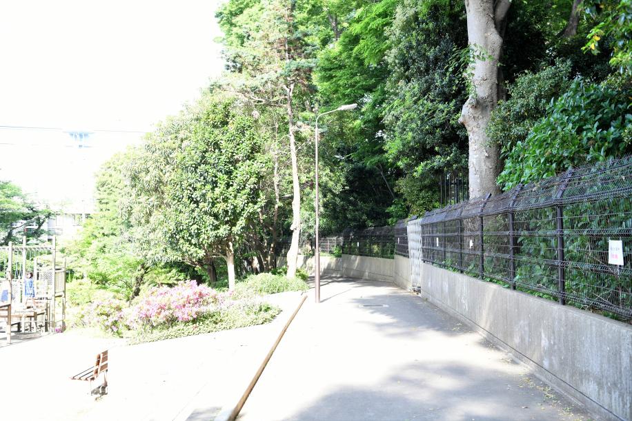 昆陽墓への道