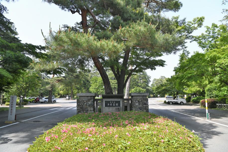 多磨霊園 正門